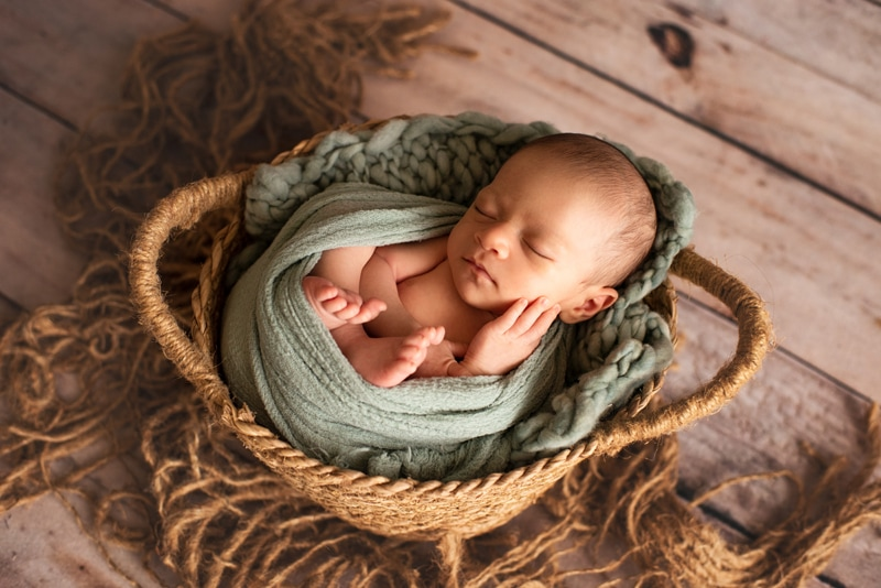 Bay Area Newborn Photography, baby wrapped in green swaddle in basket